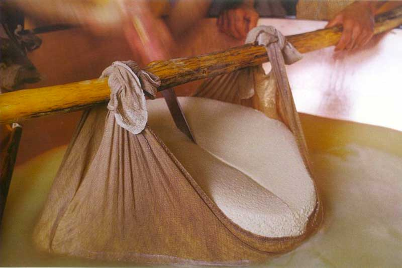 The making of Parmigiano reggiano cheese