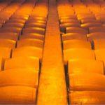 parmigiano reggiano cheese resting
